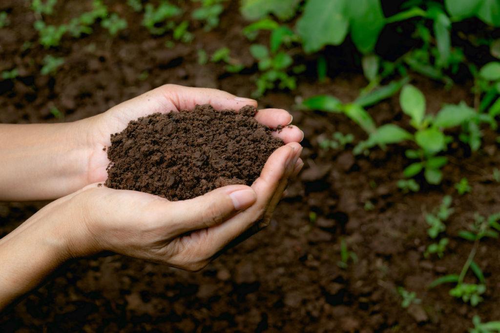 Garden Soil Calgary